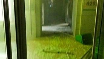Челка, капюшон, перчатки:Опубликованочеткое фото подозреваемого во взрыве в Петербурге