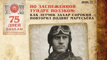 По заснеженной тундре ползком: Как лётчик Захар Сорокин повторил подвиг Маресьева
