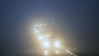 Автобус и фура столкнулись в Тюменской области из-за сильного тумана