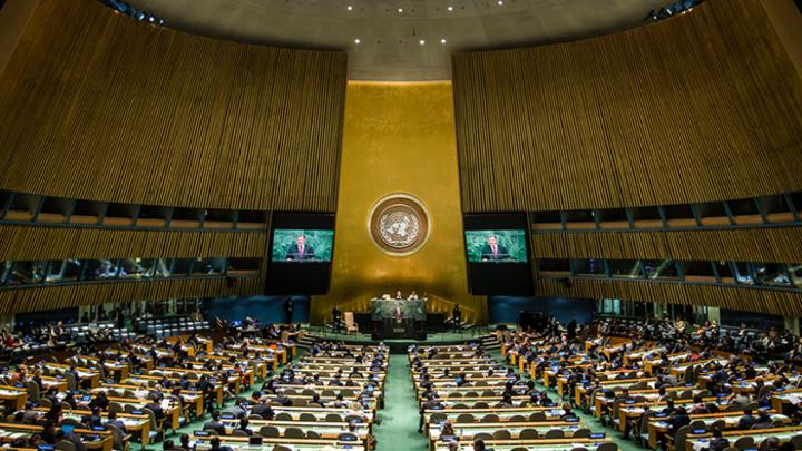 Резолюция ООН разделила мир на «друзей» и «врагов» России