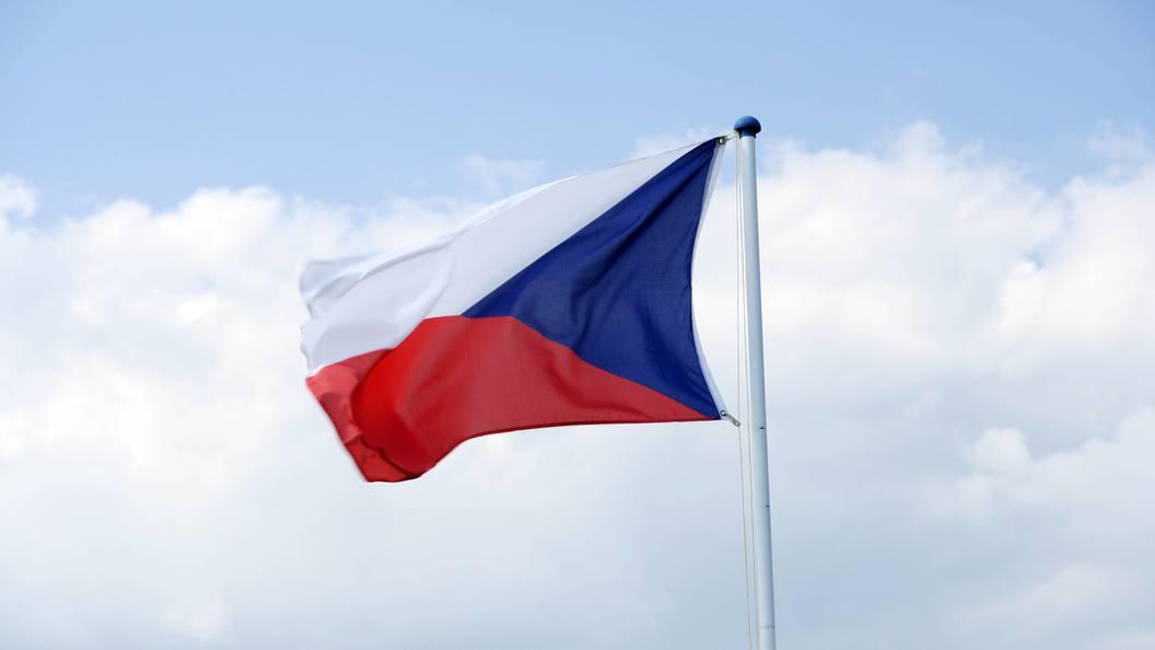 Чешский посол пообещал не увольняться до приезда Земана в Москву