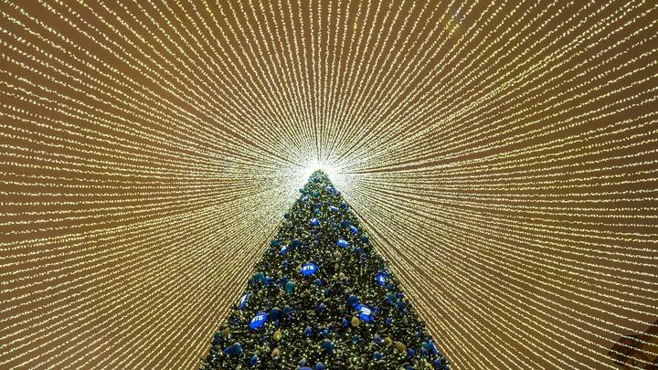 Мэрия Новосибирска закупит новогодние гирлянды на три миллиона рублей