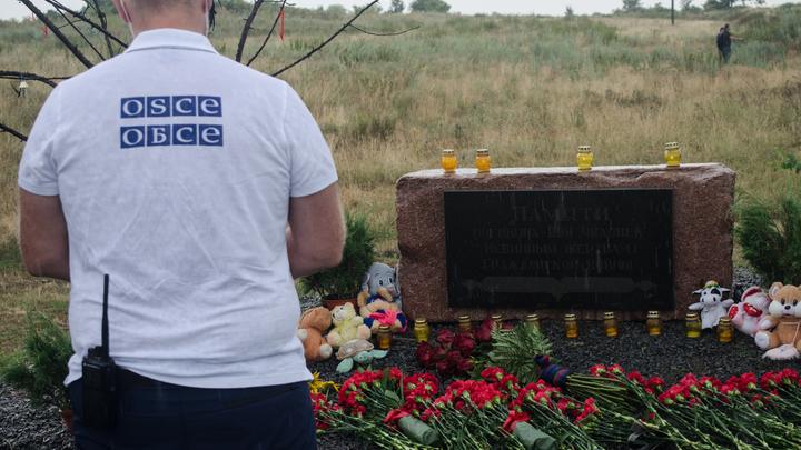 Украина действовала не одна. Антипов назвал соучастника Киева в деле MH17