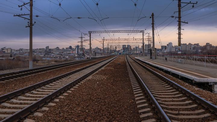 Отменённый из-за коронавируса скорый поезд Новосибирск-Омск запустили снова