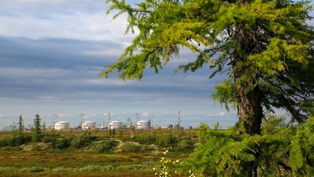 Лучшие в России, среди лидеров в мире: Роснефть блеснула в очередном экологическом рейтинге