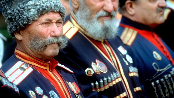 Путин поддержал идею о казачьих подразделениях в Росгвардии