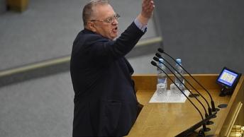 В тени Жириновского: ЛДПР представила свой состав правительства