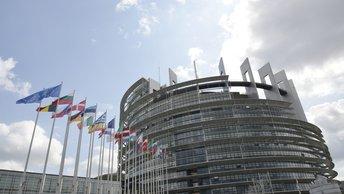 Вице-президент Европарламента забыла, кто освободил концлагерь Освенцим