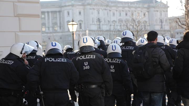 Правоохранители Вены не увидели состава преступления в похищении ребенка гражданки России