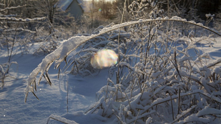 Погодная яма: В европейской части России на смену осени пришла зима