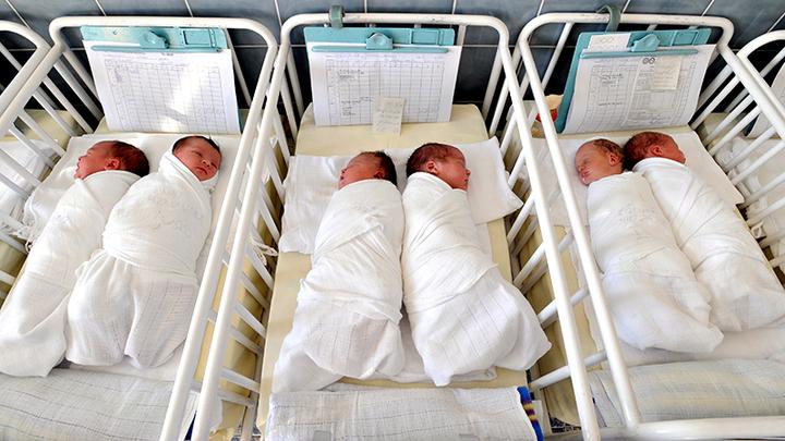 Мамы напрокат: Россия стала суррогатным инкубатором, процветают детские фермы