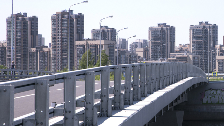 Нужен ли в Петербурге мост Кадырова?