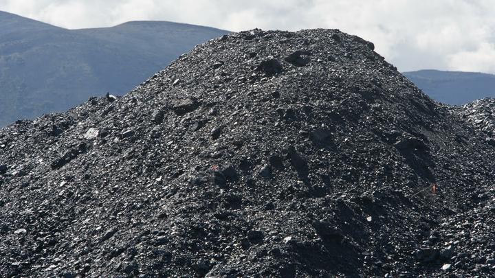 На Украине ждут еще четыре судна с золотым углем из США