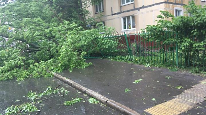 В Москве объявили экстренное предупреждение из-за ветра