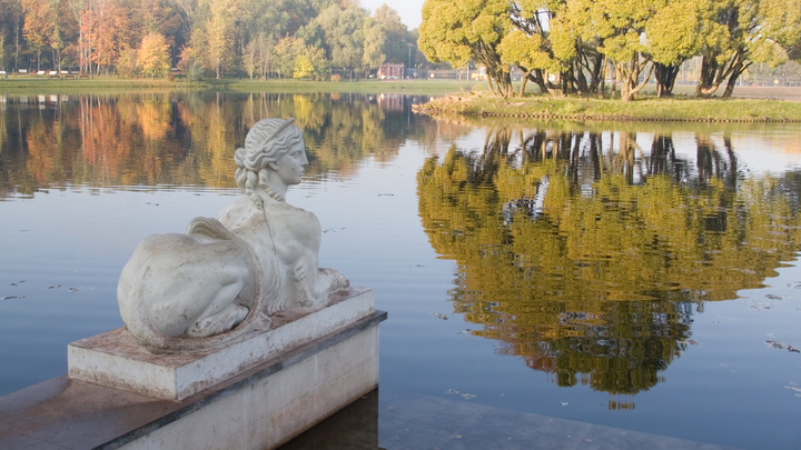 Слишком дерзко смотрела: Вандал в Петербурге обезглавил статую
