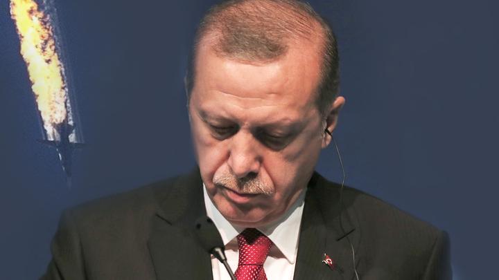 Эрдоган извинился