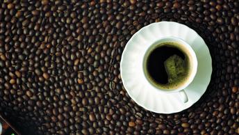 Только самое лучшее: Нижегородское правительство потратит 180 тысяч на кофемашину