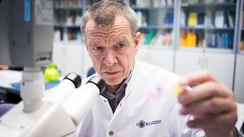 Камчатские микробиологи нарисовали веселого человечка из бактерий