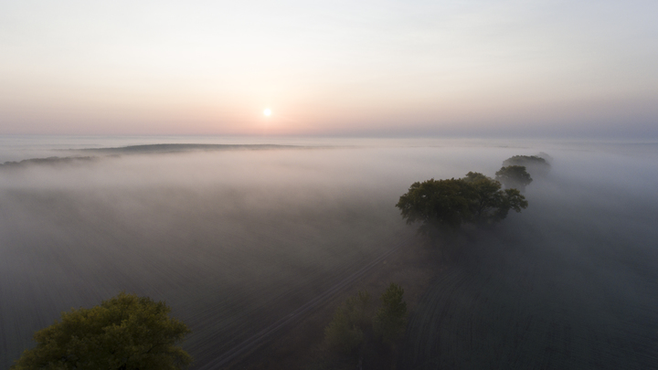 Домодедово заволокло туманом, самолеты отправляют в другие города