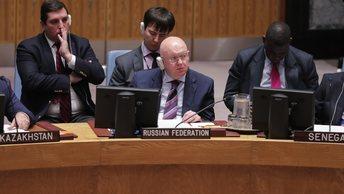 Россия предложила свой вариант продления мандата комиссии по химоружию в Сирии