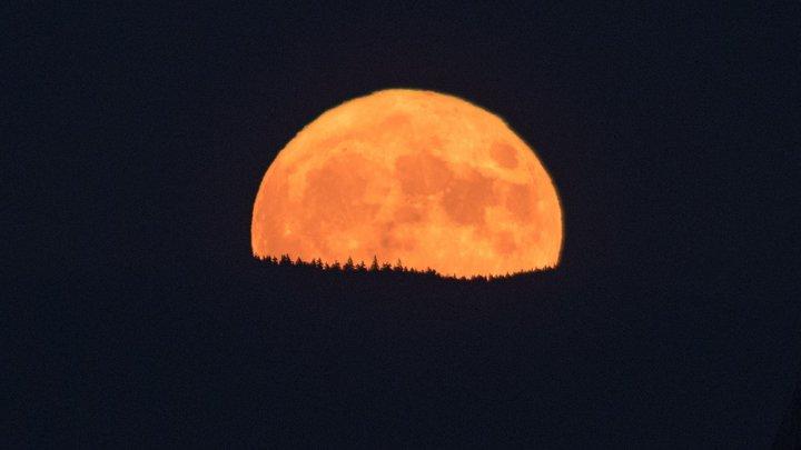 Сегодня ночью в небе взойдет гигантская луна апельсинового цвета