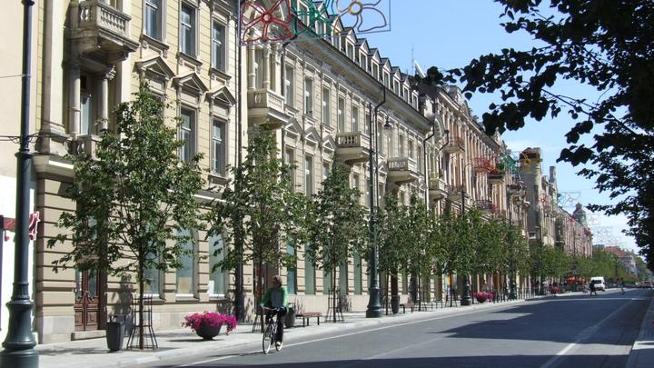 Бей своих, чтобы чужие боялись: В Литве вновь декоммунизируют скверы и улицы