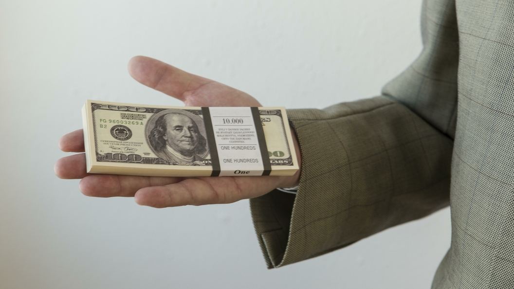 ВСША 6-летний обзорщик игрушек стал долларовым миллионером