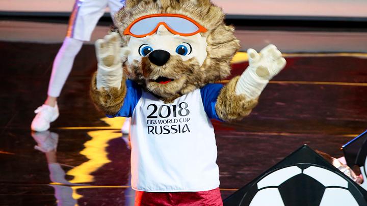 Англичане пугают своих фанатов нападениями медведей на чемпионате мира-2018