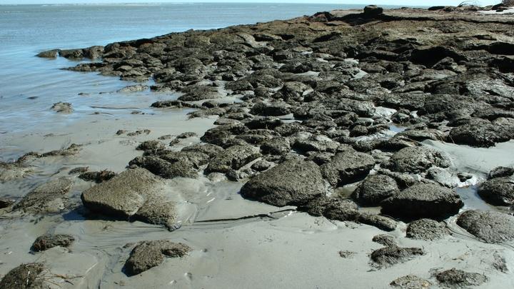 На Сахалине объявили лавинную опасность: Мощный циклон затронет весь остров