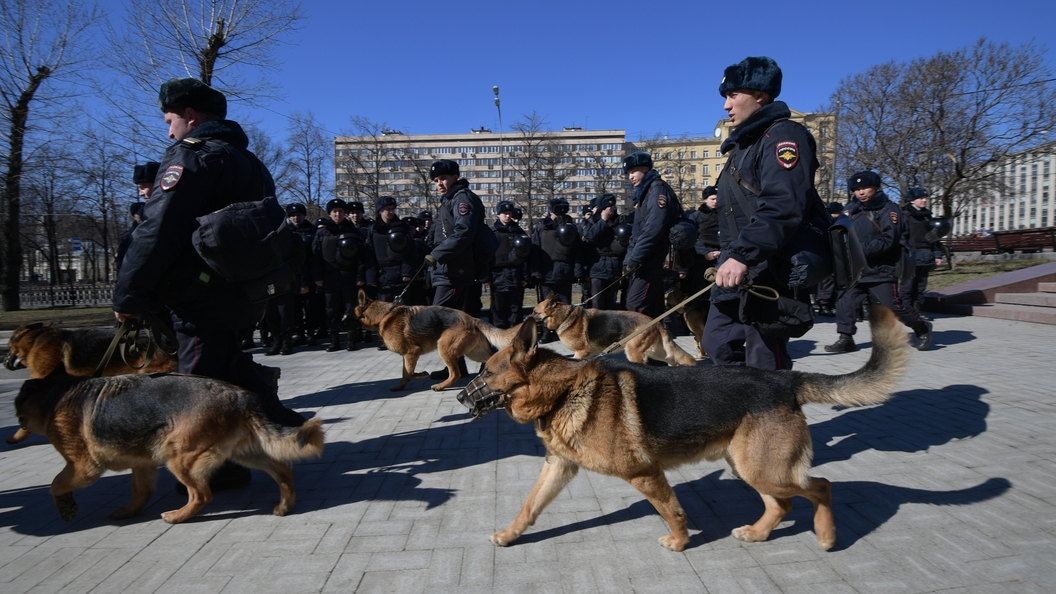 Щеночки Минобороны поздравили граждан России сНовым годом