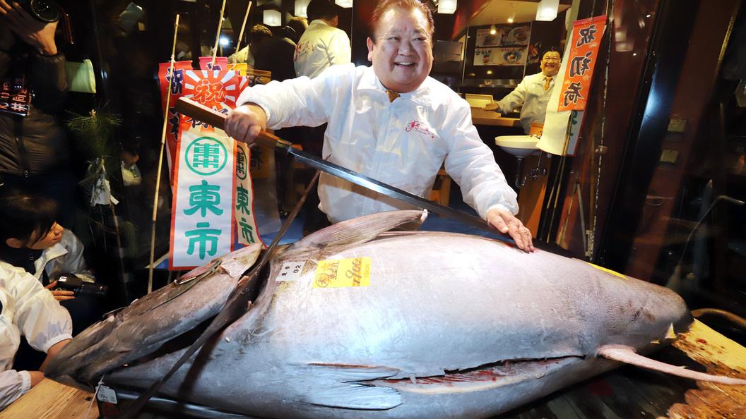 ВТокио за $323 тысячи продали голубого тунца весом в405кг