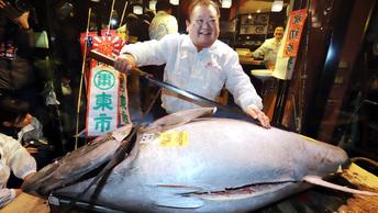 Рыбный лот: В Японии тунца продали за рекордные 323 тысячи долларов