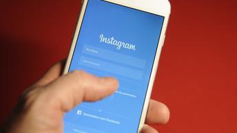 Instagram не стал комментировать блокировку аккаунта Ботсада МГУ
