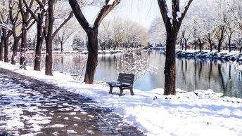 Зима в регионах стала самой теплой за все 140 лет наблюдений