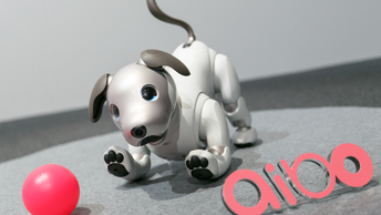 Аibo вернулся: В Японии представили нового робота-щенка стоимостью $2000