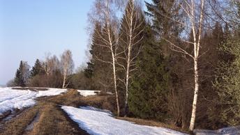 Зима уже не та: Главный синоптик отменил сильные морозы до весны