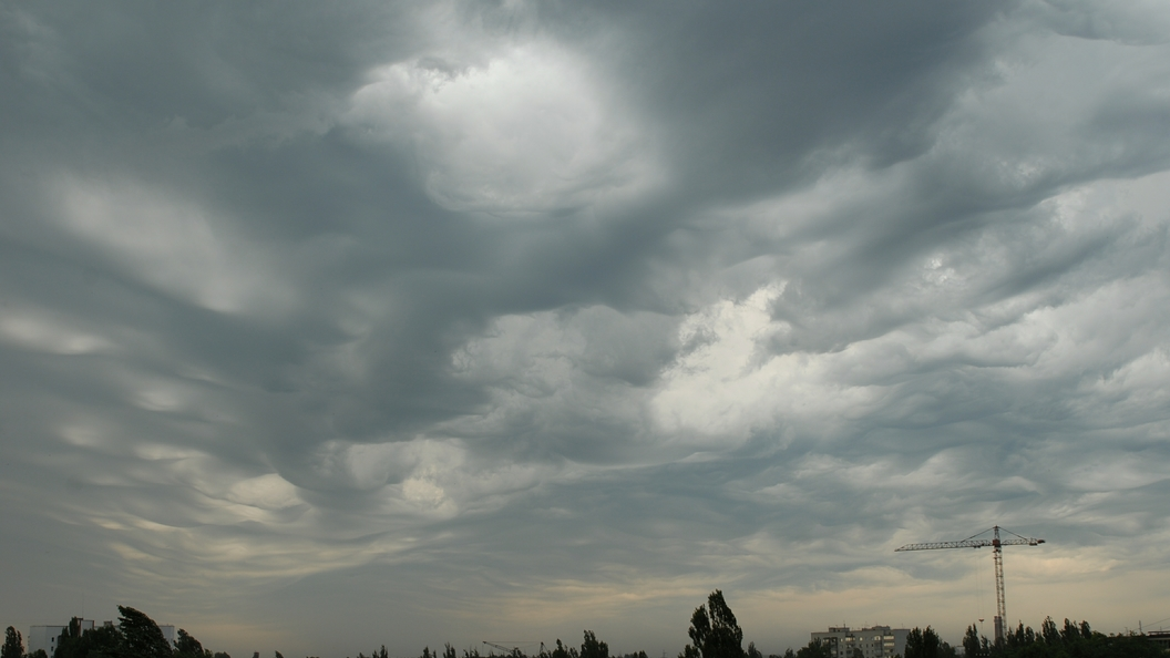 ВНидерландах объявлен «красный» уровень тревоги из-за ураганного ветра