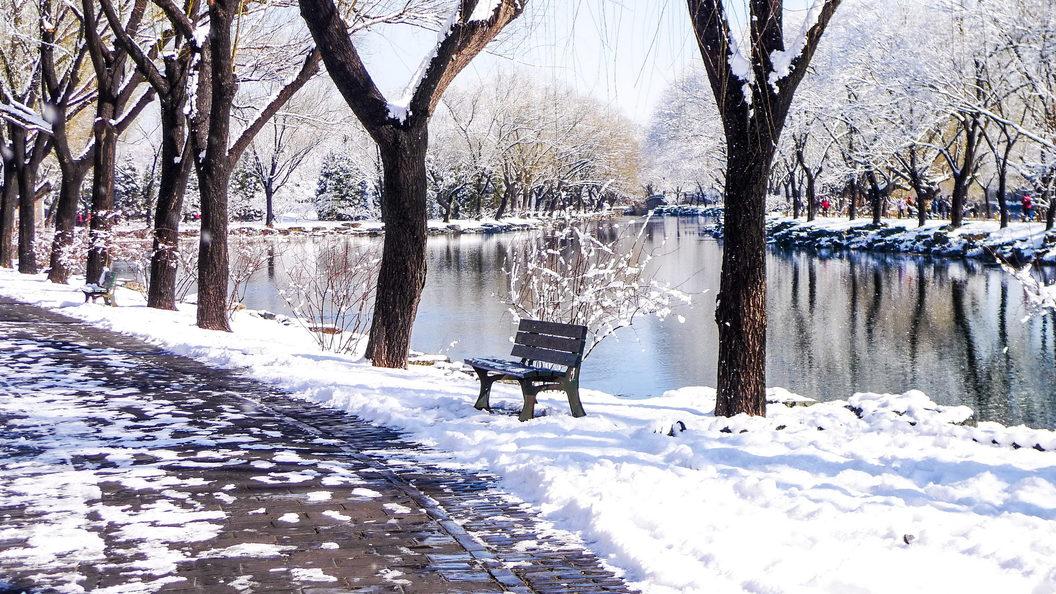 Наследующей неделе в столице России похолодает доминус 18 градусов