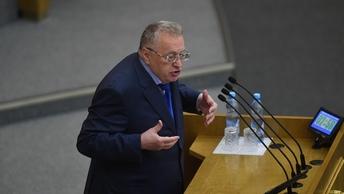 Жириновский запретил долгие поцелуи в День святого Валентина