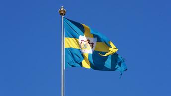 Швеция отправит войска в Донбасс