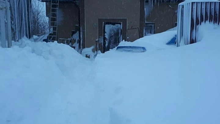 1,5-годовалая девочка спасла мать за секунду до обрушения снега - видео
