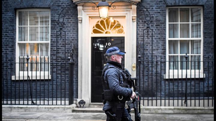 Лондонский политолог разоблачил провокацию британских властей с отравлением Скрипаля