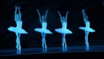 В лебеди с пенсией: Китайские старушки пристрастились к балетным курсам для начинающих - видео