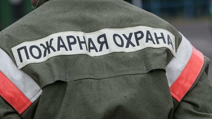 Столбы черного дыма и факел огня: В Санкт-Петербурге горит автокомплекс