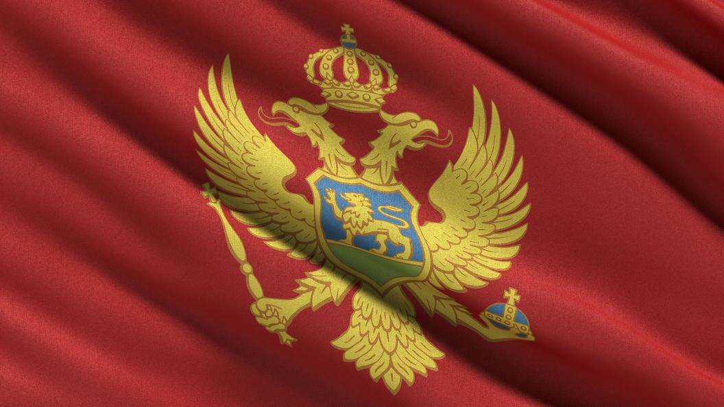 Послу Черногории в РФ вручена нота протеста