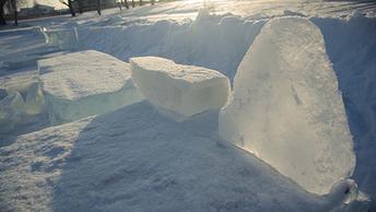 Провалившейся под лед собаке бросились на помощь сразу трое мужчин - видео