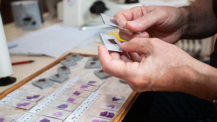 Смертей станет меньше: Испанские учёные раскрыли секрет особенности коронавируса