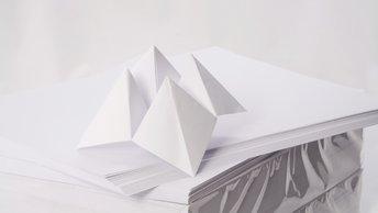 От госпереворота к искусству оригами: Савченко увлеклась в СИЗО японским хобби
