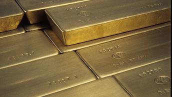 Пора потрошить Форт-Нокс: Жириновский потребовал вернуть из США золото России