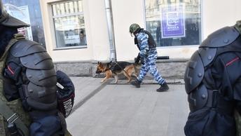 Живописный мост в Москве закрыт, работают кинологи